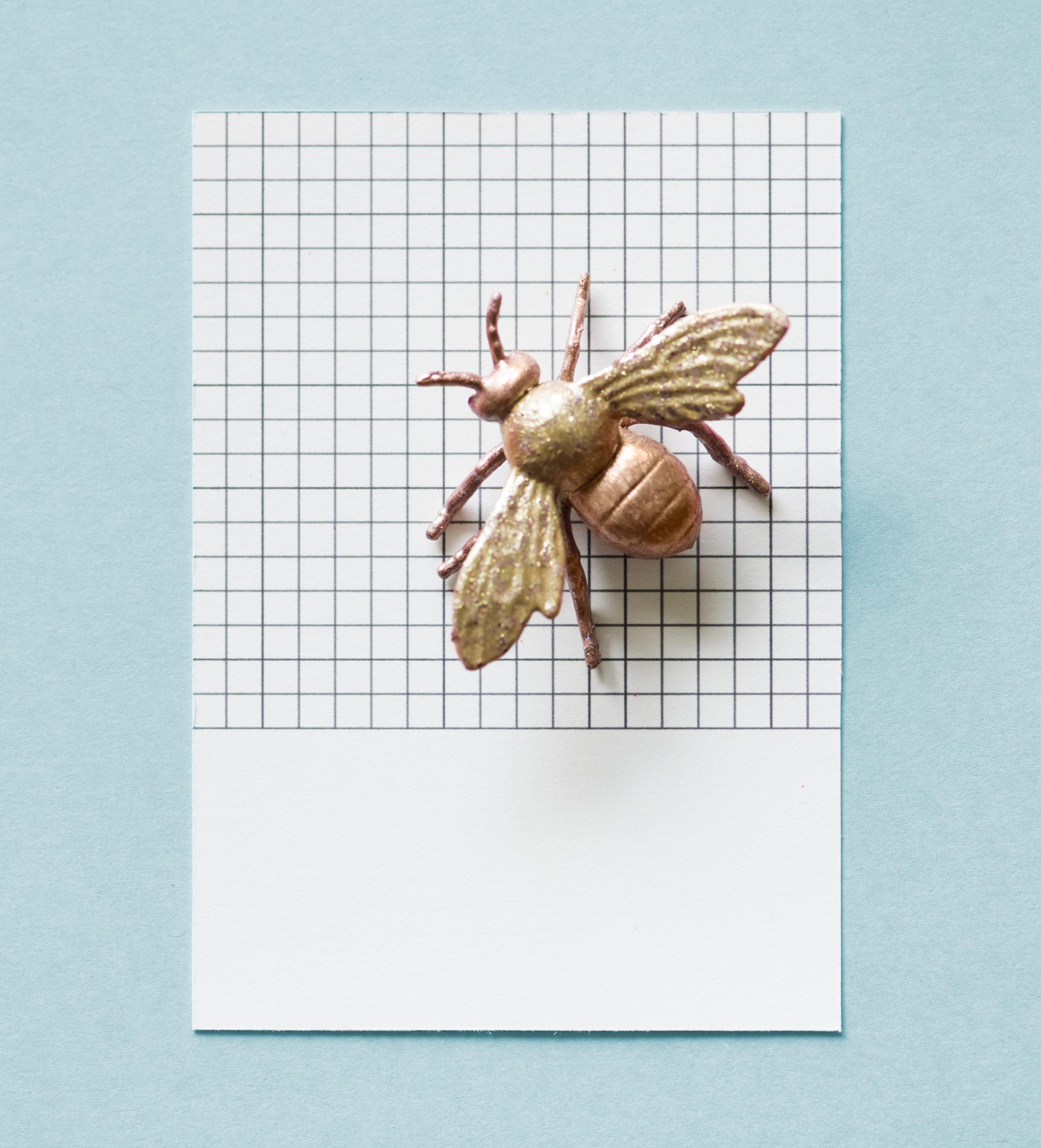 Cómo eliminar las moscas de casa.